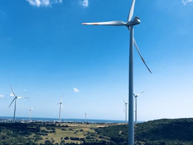 Quá thiếu nhân lực nghiệm thu dự án điện mặt trời, EVN tái ký hợp đồng với cán bộ nghỉ hưu! - 4