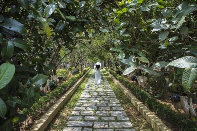 Nhà vườn An Hiên đón du khách trở lại với vẻ đẹp đậm đà văn hóa Huế - 4