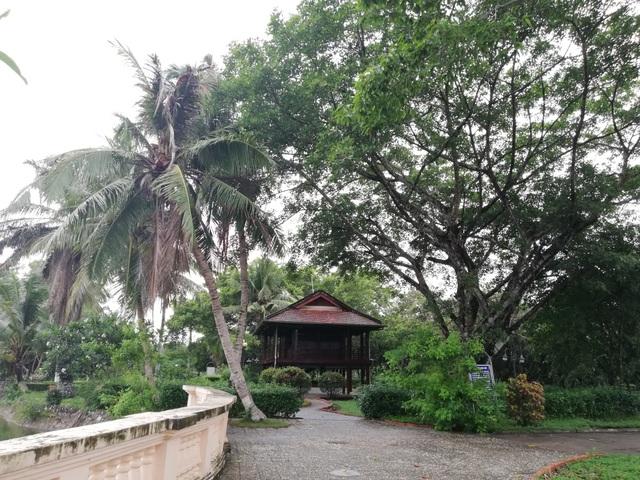 Thăm nhà sàn Bác Hồ ở Cà Mau - 9