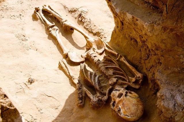 Phát hiện hài cốt 2.500 tuổi chôn cùng trang sức vàng và đầu ngựa - 1