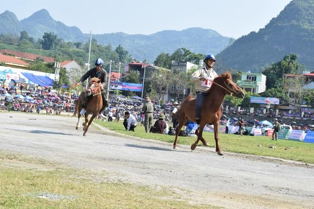 Lễ hội đua ngựa lớn chưa từng có trên cao nguyên trắng Bắc Hà - 1