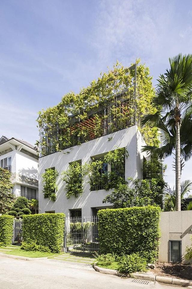 """""""Trốn"""" nóng trong ngôi nhà phủ kín cây xanh ở Sài Gòn - 9"""