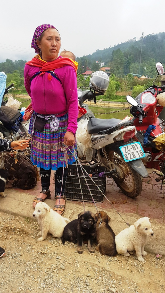 Những em bé đi chợ trên… lưng mẹ ở Bắc Hà! - 13