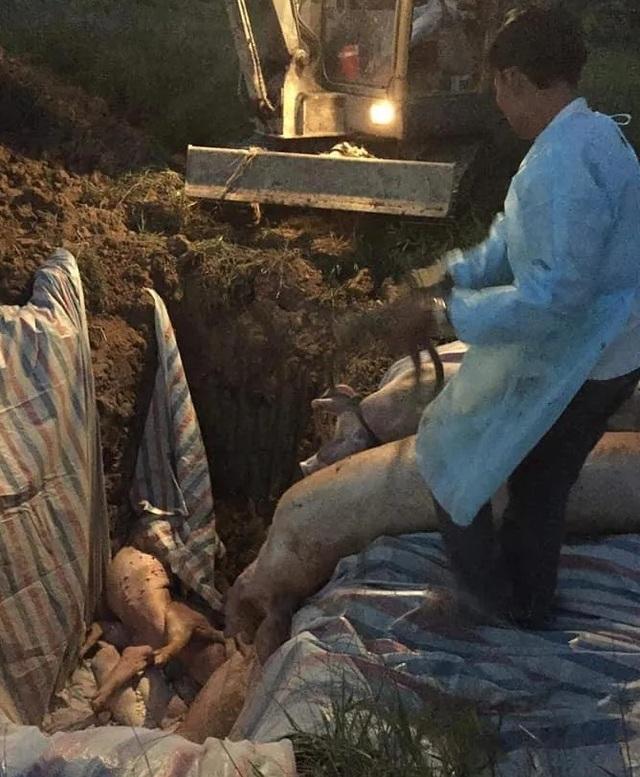 Phát hiện hàng trăm kg nội tạng và thịt lợn không rõ nguồn gốc trên xe khách - 5