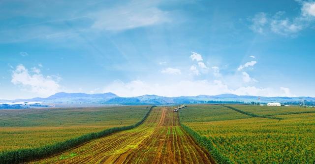"""Tập đoàn TH đồng hành với người nông dân, đánh thức tiềm năng vùng đất """"chưa mưa đã lụt, chưa nắng đã hạn"""" - 3"""