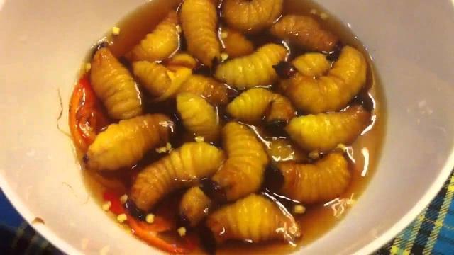 Sởn da gà nếm thử 5 đặc sản từ sâu béo núc ở Việt Nam - 11