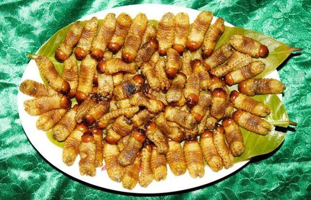Sởn da gà nếm thử 5 đặc sản từ sâu béo núc ở Việt Nam - 15