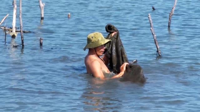 Ra quân giải tỏa nuôi thủy sản trái phép trên danh thắng Quốc gia đầm Ô Loan! - 3