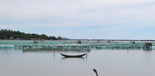 Ra quân giải tỏa nuôi thủy sản trái phép trên danh thắng Quốc gia đầm Ô Loan! - 2