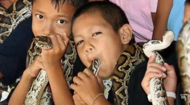 Bí ẩn ở ngôi làng kỳ lạ coi rắn độc như bầu bạn - 1