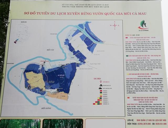 """Canô """"xẻ"""" nước, vỏ máy bồng bềnh xuyên rừng Mũi Cà Mau - 1"""