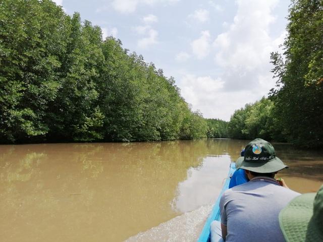 """Canô """"xẻ"""" nước, vỏ máy bồng bềnh xuyên rừng Mũi Cà Mau - 2"""