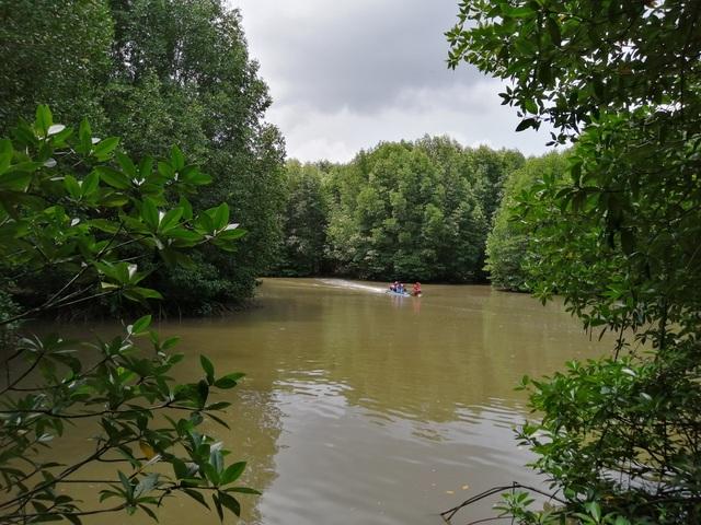 """Canô """"xẻ"""" nước, vỏ máy bồng bềnh xuyên rừng Mũi Cà Mau - 6"""