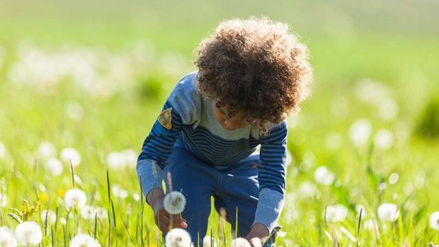 Những người lớn lên trong môi trường thiên nhiên có sức khỏe tâm thần tốt hơn? - 1