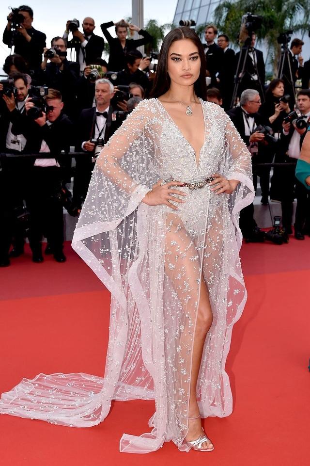 Những bộ váy đẹp nhất trên thảm đỏ Cannes 2019 - 4