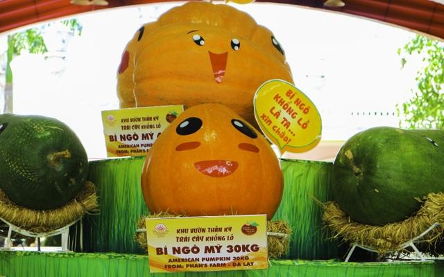 Lễ hội trái cây Nam Bộ lần thứ 15 đậm đà văn hóa Nam Bộ - 4