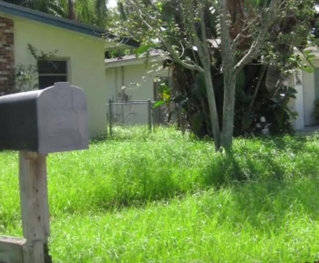 Ngã ngửa trước nguy cơ mất nhà chỉ vì để cỏ mọc quá cao - 1