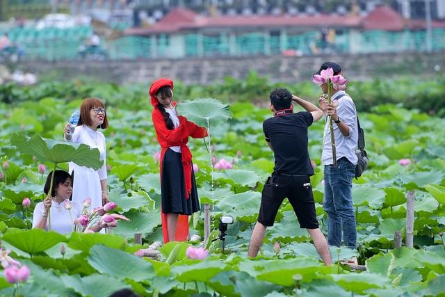 Thiếu nữ Hà Thành thả dáng bên đầm sen hồ Tây - 3