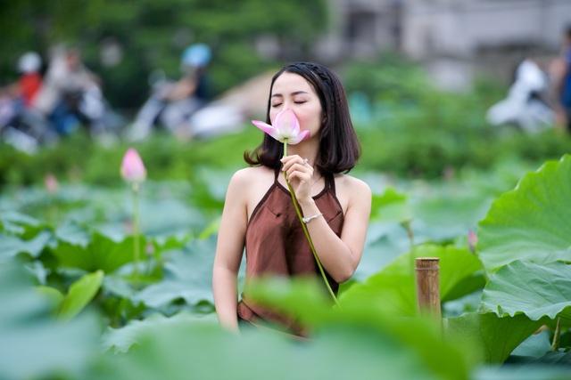 Thiếu nữ Hà Thành thả dáng bên đầm sen hồ Tây - 4