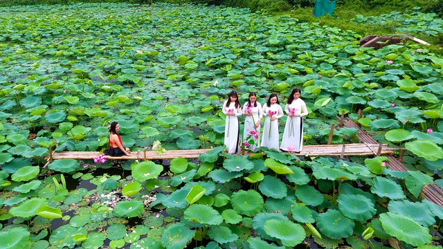 Thiếu nữ Hà Thành thả dáng bên đầm sen hồ Tây - 12
