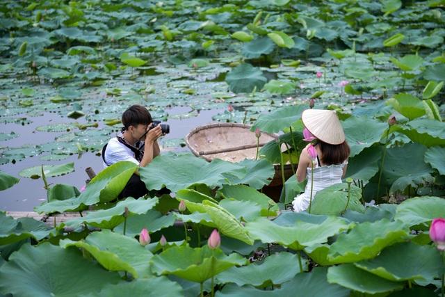Thiếu nữ Hà Thành thả dáng bên đầm sen hồ Tây - 9