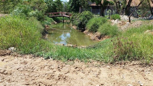 """Chánh văn phòng UBND tỉnh Thừa Thiên Huế: """"Không có ai chống lưng """"đại gia"""" lấn chiếm đất công"""" - 2"""