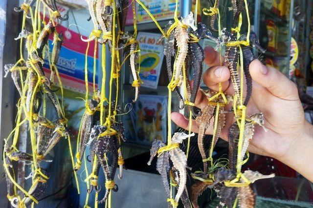 Những đặc sản Việt được ví như thần dược dành cho phái mạnh - 2