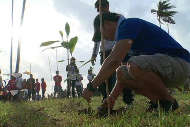 Học sinh, sinh viên Philippines phải trồng 10 cây xanh mới được tốt nghiệp! - 4