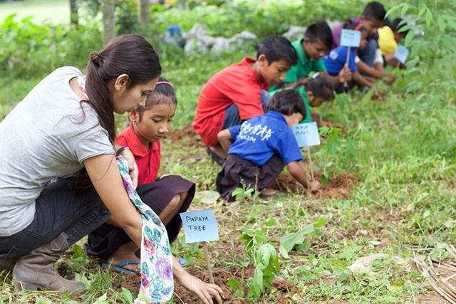 Học sinh, sinh viên Philippines phải trồng 10 cây xanh mới được tốt nghiệp! - 3