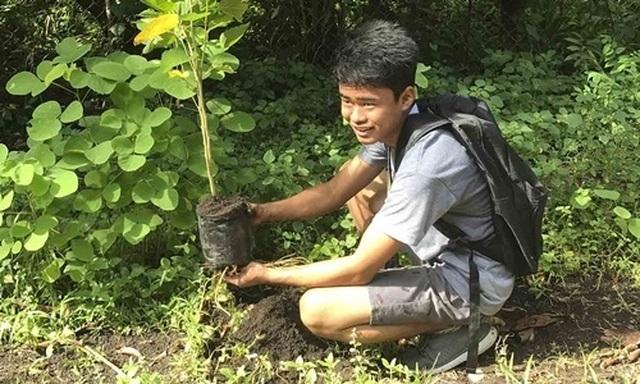 Học sinh, sinh viên Philippines phải trồng 10 cây xanh mới được tốt nghiệp! - 1