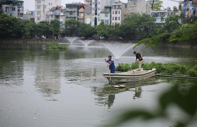 Hà Nội: Cá chết nổi trắng hồ Văn Chương, dân sống quanh hồ không dám... thở - 4