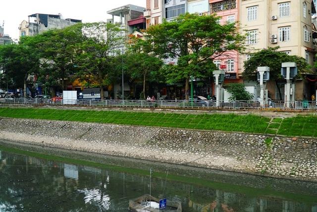 Nước sông Tô lịch đổi màu sau nửa tháng lọc bằng công nghệ Nhật - 4