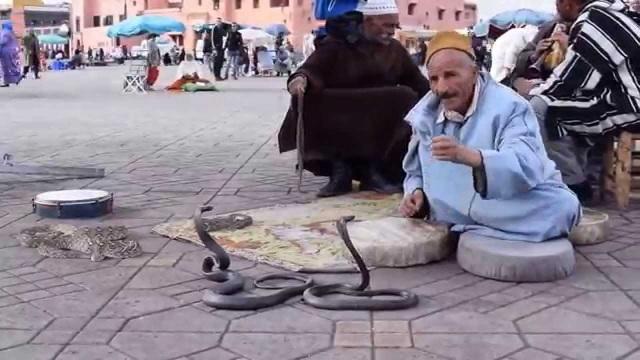 Xem màn thôi miên rắn giữa chợ vừa ma mị vừa rợn người - 1