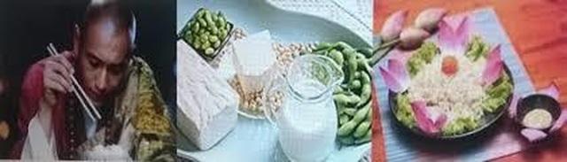 Ăn chay và các rối loạn nội tiết – chuyển hóa - 1