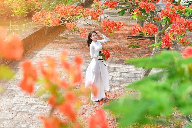 Cô gái xinh đẹp thả hồn trên con đường hoa phượng đỏ Hải Phòng - 12