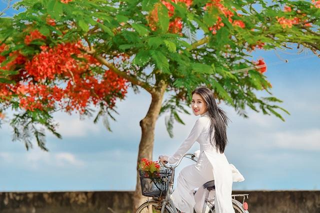Cô gái xinh đẹp thả hồn trên con đường hoa phượng đỏ Hải Phòng - 18