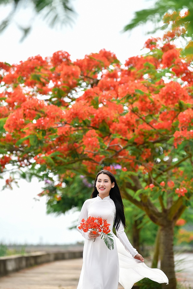 Cô gái xinh đẹp thả hồn trên con đường hoa phượng đỏ Hải Phòng - 10