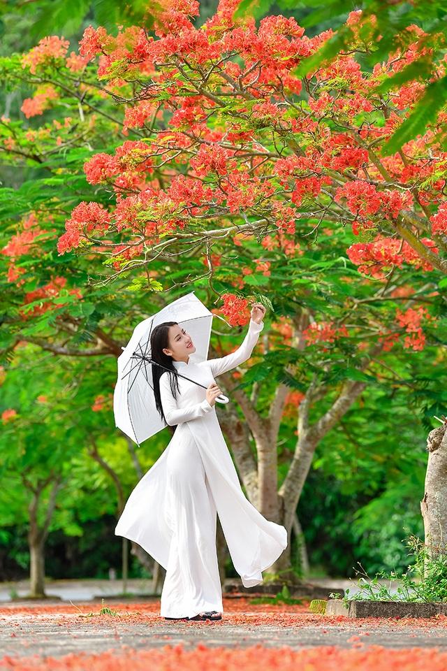 Cô gái xinh đẹp thả hồn trên con đường hoa phượng đỏ Hải Phòng - 2