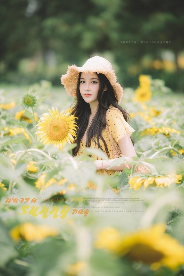 Hot girl ĐH Thương mại gây thương nhớ với bộ ảnh bên hoa hướng dương - 3