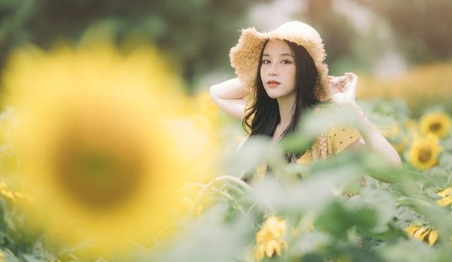 Hot girl ĐH Thương mại gây thương nhớ với bộ ảnh bên hoa hướng dương - 7
