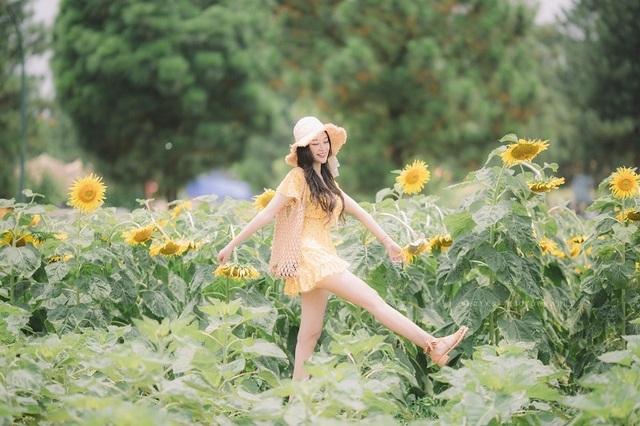 Hot girl ĐH Thương mại gây thương nhớ với bộ ảnh bên hoa hướng dương - 8