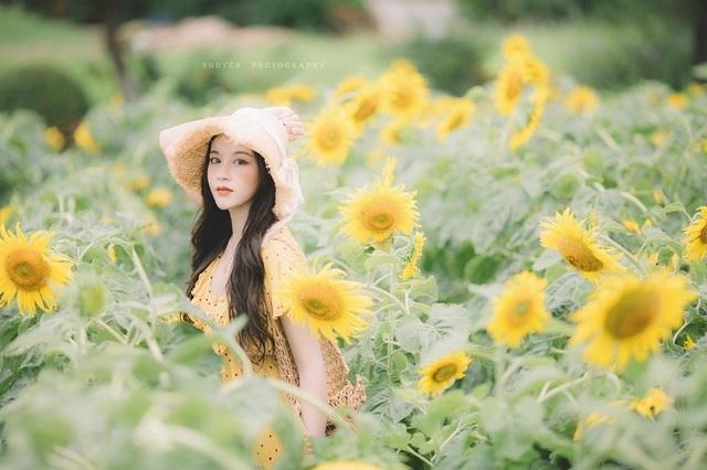 Hot girl ĐH Thương mại gây thương nhớ với bộ ảnh bên hoa hướng dương - 11