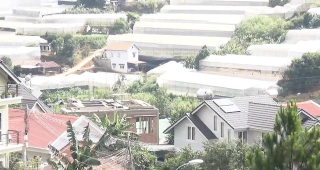 Giá đất Đà Lạt bị cò hét giá lên 1 tỷ đồng/m2 - 5