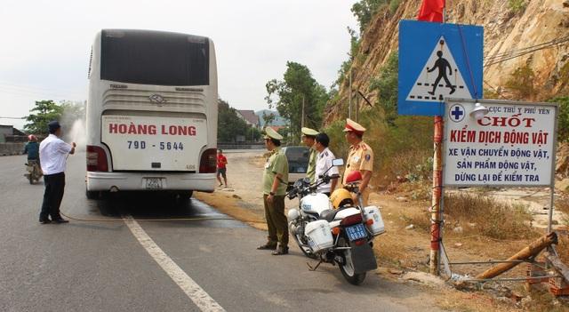 Dịch tả lợn châu Phi sát nách, Phú Yên họp khẩn lên phương án đối phó - 2