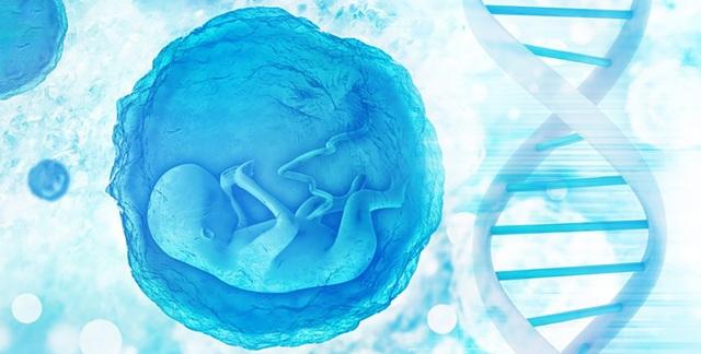 Những em bé được chỉnh sửa gene đầu tiên có nguy cơ tử vong sớm - 1
