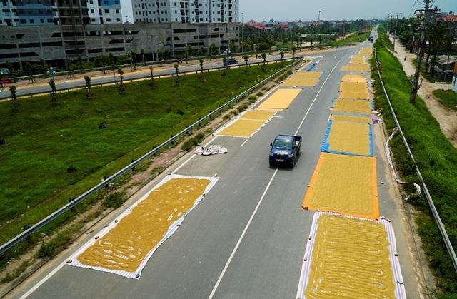 Cảnh phơi thóc chiếm phần lớn lòng đường ở Hà Nội - 1