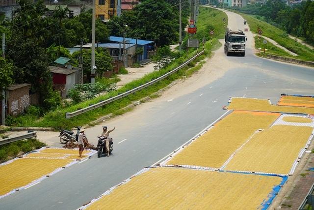 Cảnh phơi thóc chiếm phần lớn lòng đường ở Hà Nội - 2