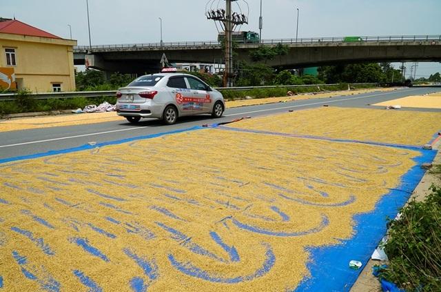 Cảnh phơi thóc chiếm phần lớn lòng đường ở Hà Nội - 8
