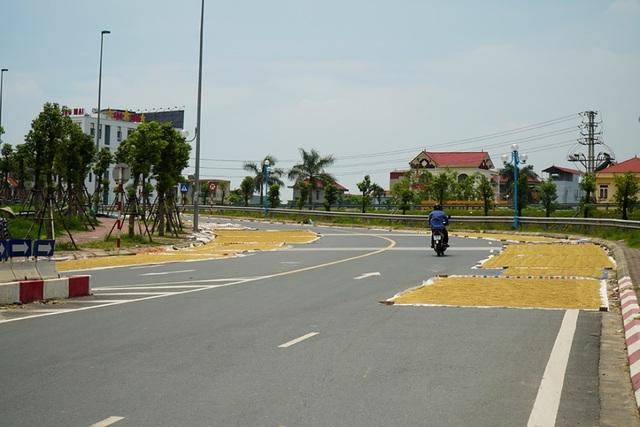 Cảnh phơi thóc chiếm phần lớn lòng đường ở Hà Nội - 9
