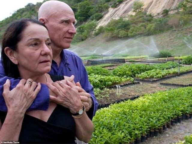 Đôi vợ chồng dành ra 20 năm để trồng hàng triệu cây xanh - 1